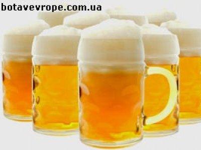 Работа в Польше пивоваром