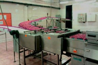 Работа в Польше и Голландии на куриной фабрике