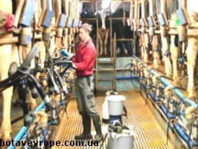 Работа в Чехии фермерское хозяйство
