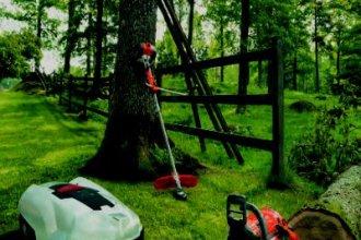 Работа в Эстонии на уходе за лесом