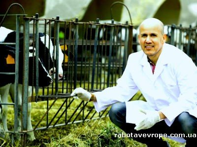 Работа в Польше зоотехником