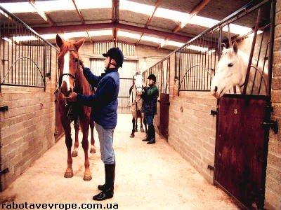 Работа в Швейцарии в конном клубе
