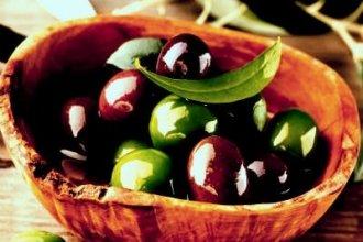 Работа в Португалии на сборе маслин